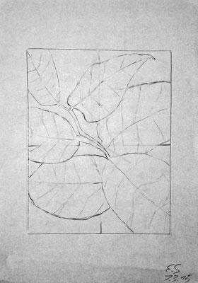 Elias Schüler (14 Jahre), 2015, Bleistift, 29,5 x 21 cm