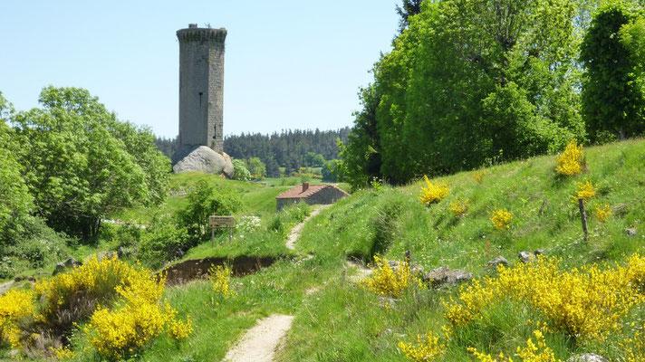 Le donjon de La Clauze, une tour octogonale du XIIIème siècle