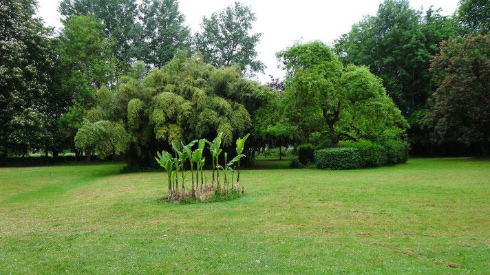Le parc chez Madame Mativon