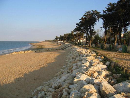 La brée - La plage