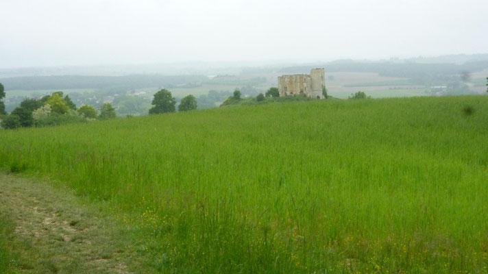 Ruines du chateau féodal de Gachepouy à Caster-Arrouy