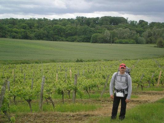 Philippe au milieu des vignes