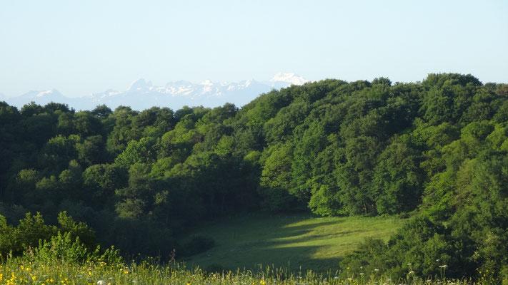 On devine la chaîne des Pyrénées au loin