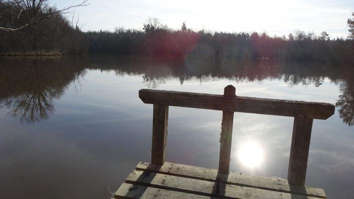 Bonde de l'étang après le chateau de la Cantée
