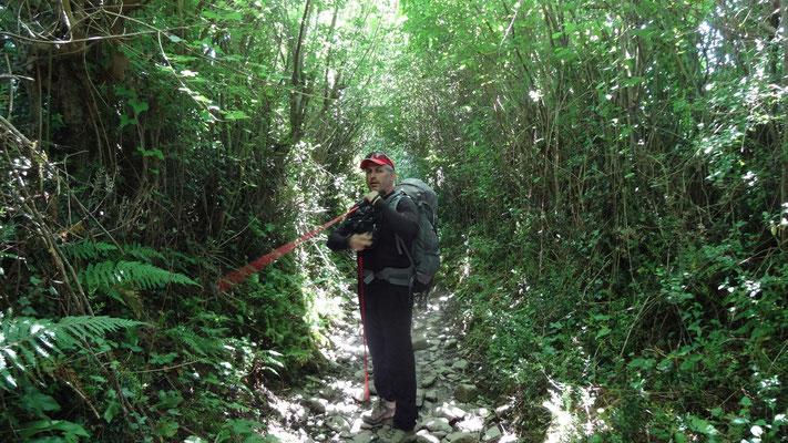 Philippe dans la ravine en arrivant à Ostabat