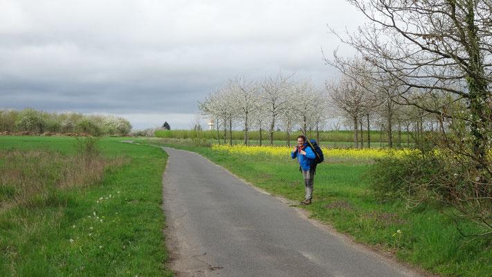 06-04-2014 - Thierry dans les vergers de Mareau