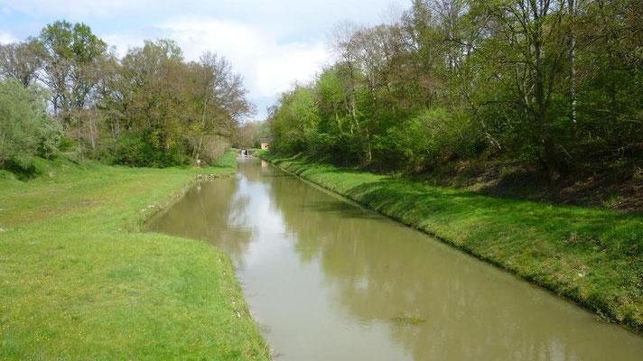 06-05-2012 - Canal de la Sauldre - Fin du parcours après 32 km
