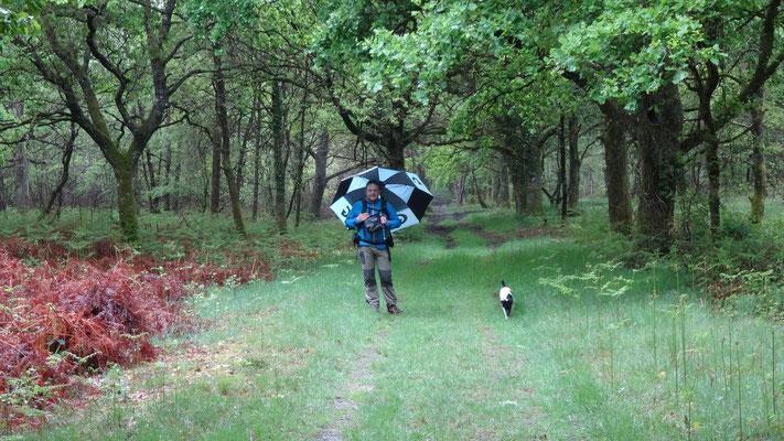 27-04-2014 - Il pleut Thierry test le parapluie