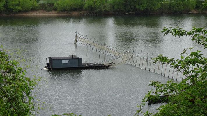 21-04-2014 - Un des dernier pêcheur en Loire à Muides