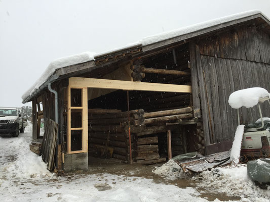 Einbau Garage in Stall