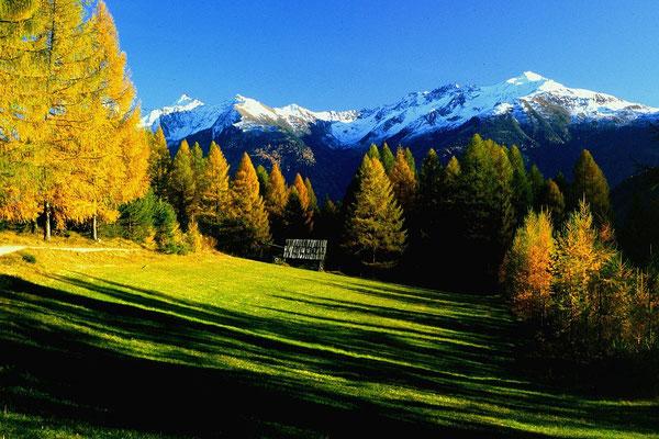 Heustadel auf einer Lärchwiese am Mieminger Sonnenplateau. Im Hintergrund Ötztaler Alpen.
