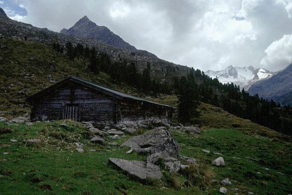 Der unversehrt gebliebene Viehstall der Wildkar Hochalm