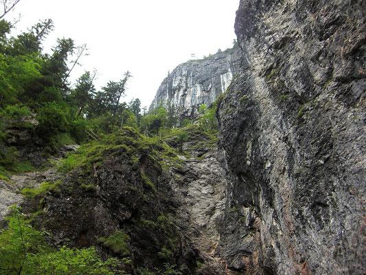 Felswände über dem Quelltopf der Pießling
