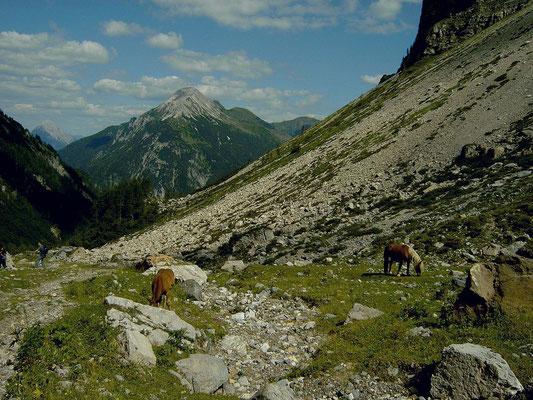Das Gebiet der oberen Valentinalm ist erreicht