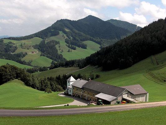 Bredboding Hof und Spindeleben (1066 m hoch)