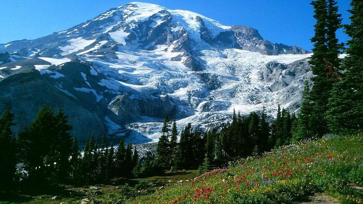 Die über 2500 m hohe Gletscherflanke des Mount Rainier von Paradise aus