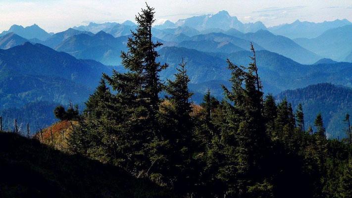 Die Zugspitze hinter den bewaldeten Kämmen der Schlierseer und Tegernseer Berge