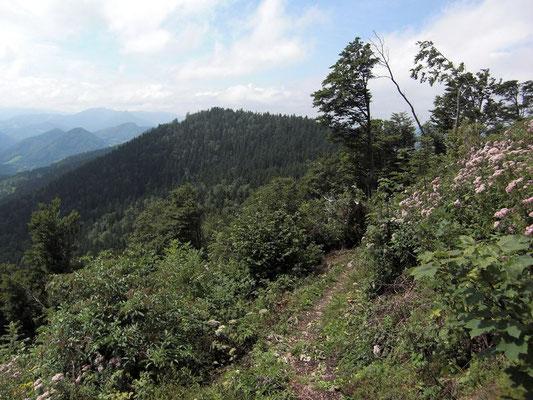 Steig von der Einsattelung auf das Plateau der Lindaumauer