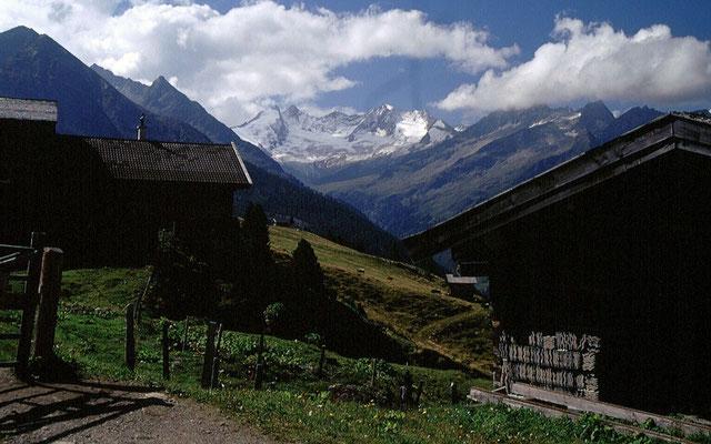 Sicht vom Almgebiet unter dem Plattenkogel über das Wildgerlostal zum Reichenspitzkamm