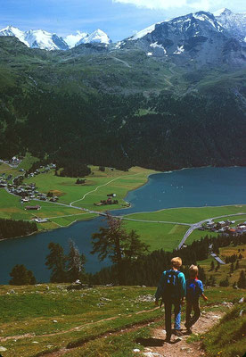 Blick über den Silvaplaner See zur Fourcla Surlej, zu den höchsten Gipfeln der Bernina und zum Piz Corvatsch.