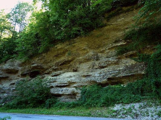 Station 4 des GeoPfads: Bröckelnde Wand aus Konglomerat (durch Sickerwasser  gelöster Kalk im Schotter, der die losen runden Steine zunehmend verklebt)
