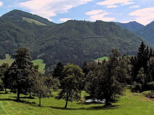 Unterwegs zum Krotenberg