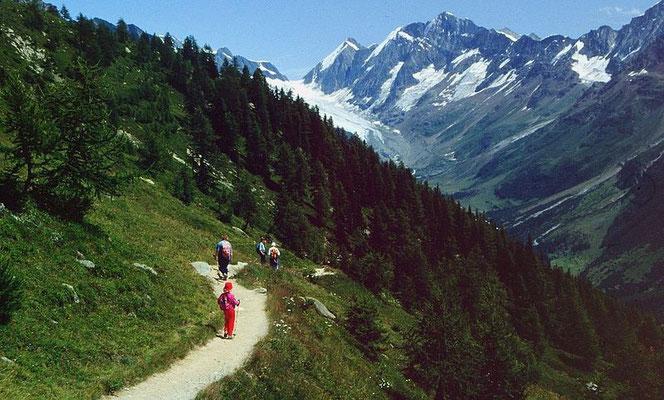 Lötschentaler Höhenweg gegen Langgletscher und Lötschenlücke