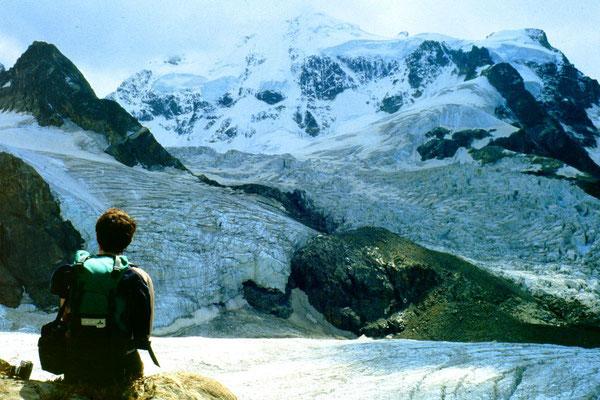 Piz Roseg NO-Wand und Tschiervagletscher vom Gebiet der Tschiervahütte 1981