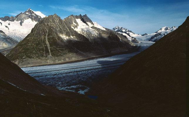 Blick vom Tälligrat und Märjelensee und Aletschgletscher