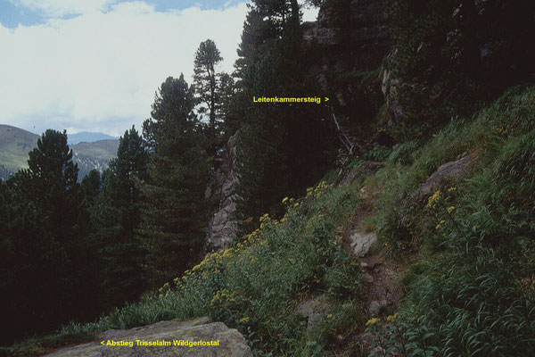 Steile enge Passage vor der Wildkar Hochalm