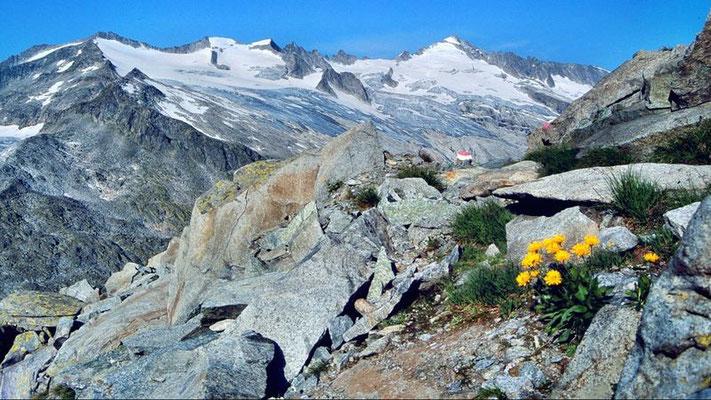 Schlieferspitze vom Steig zum Keeskogel