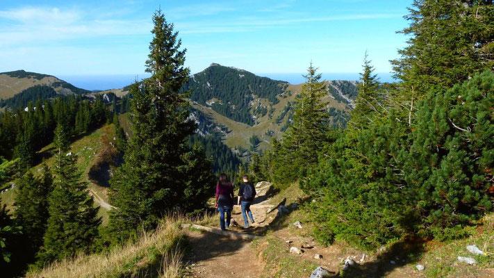 Der Weg Richtung Taubenstein