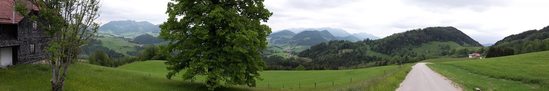 Rückweg auf dem Sträßchen zwischen Buchschachen (hinten rechts) und Glasnerhütte
