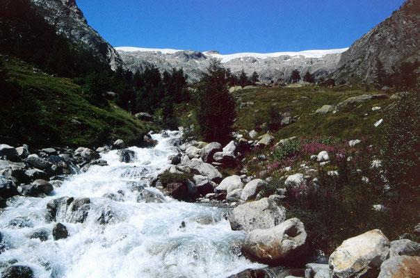Der Gletscherbach vom Petersgrat im Tellital