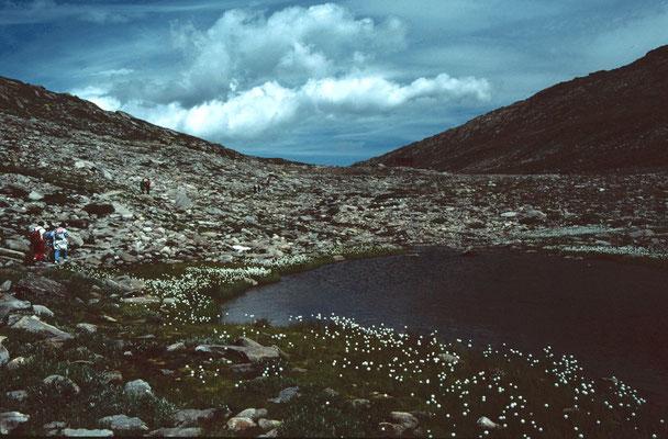 Am Nordufer des Märjelensees führt die Wanderung zum Kühboden zurück.