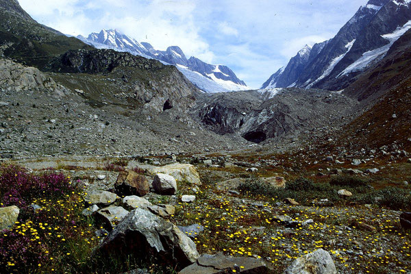 Das ehemalige Gletschertor des Langgletschers. Inzwischen hat sich der Gletscher ein Stück zurückgezogen.