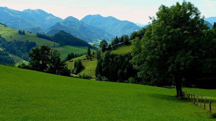 Almkogel und Gamskogel vom Freithofberg