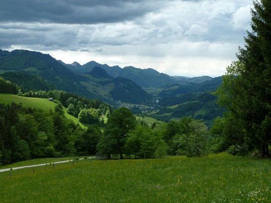 Aussicht auf das Ennstal bei Losenstein und Ternberg