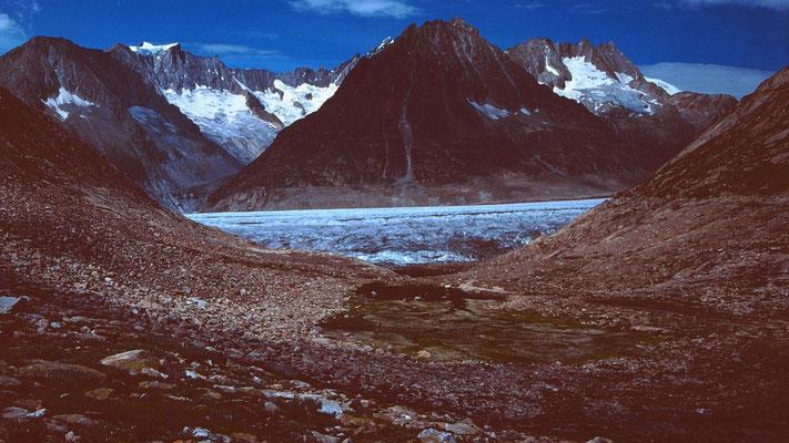 Märjelenseen und Aletschgletscher vom Abstiegsweg Tälligrat-Märjelen