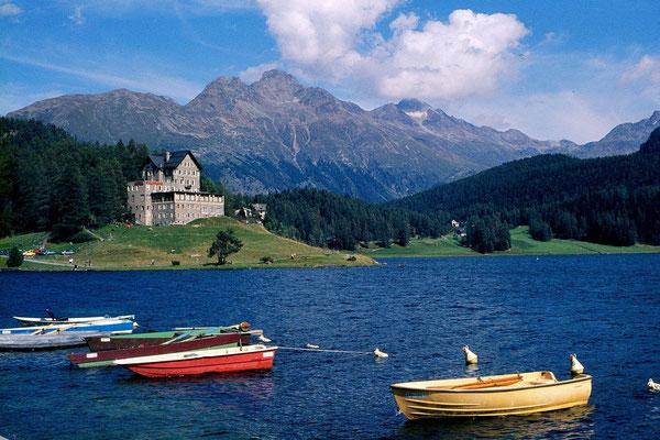 Am See bei St. Moritz gegen Piz Languard