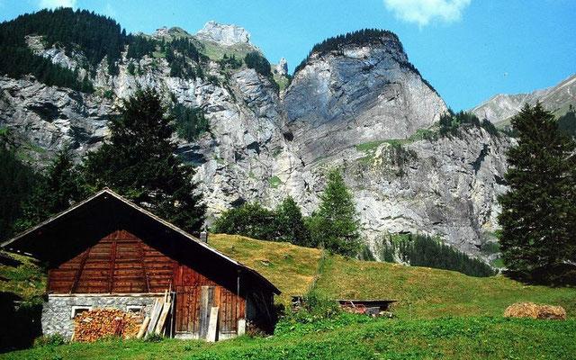 Aufstieg ins Alpgebiet von Reyharts