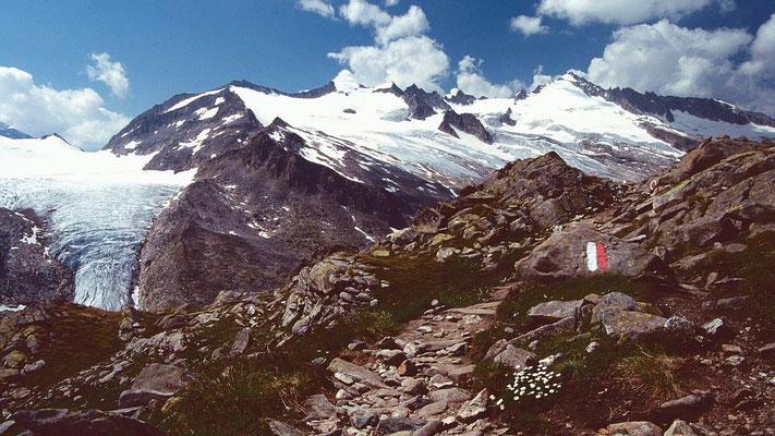 Weg zwischen Kürsinger Hütte und Gletscher