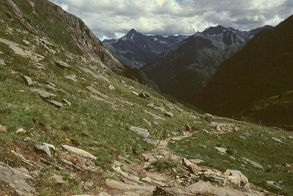 Abstieg durchs Maurer Tal ins Virgental