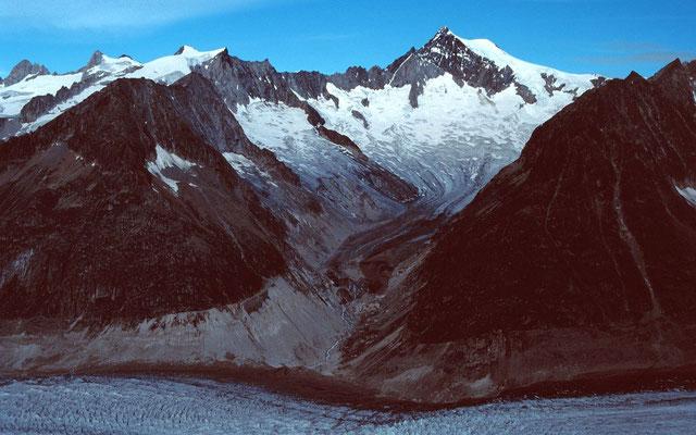 Das über 4000 m hohe Aletschhorn vom Gipfel des Eggishorns