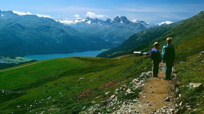 Wanderweg kurz nach dem Ausgangspunkt Corviglia, der Seilbahnstation von St. Moritz zum Piz Nair