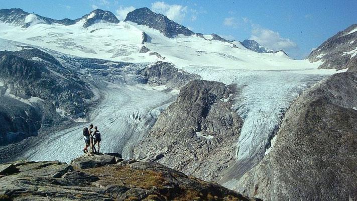 Obersulzbachkees und Maurerkeesköpfe von der Kürsingerhütte im Jahr 2000