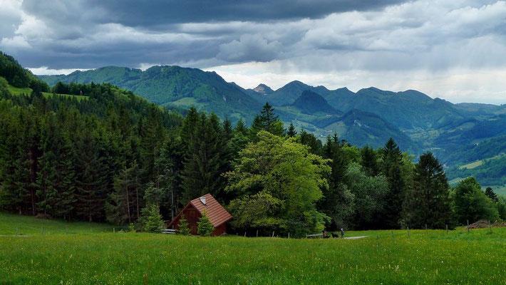 Am Rundwanderweg bei Neuhaus mit Blick auf das Gebiet bei Laussa und das Ennstal