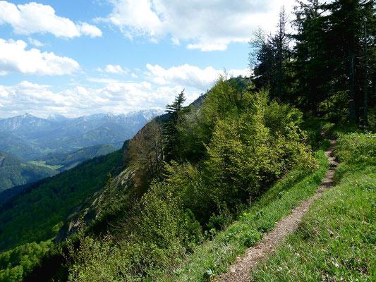 Schmaler Weg am Kamm der Bodenwies nördlich des Gipfelkreuzes