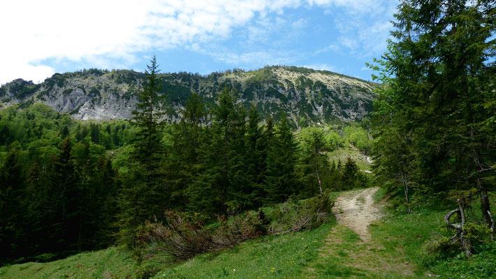 Weg zur Bodenwies