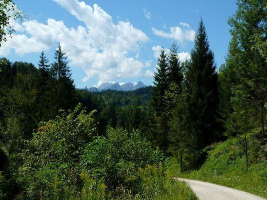 Rückblick vom GeoPfad Gams zu den hohen Bergen des Gesäuses